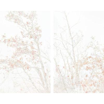 FER noviembre_009 MONTAJE NIV RET IMP